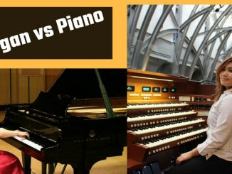 difference between piano and organ