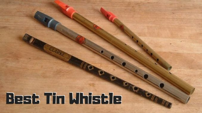 Best Tin Whistle