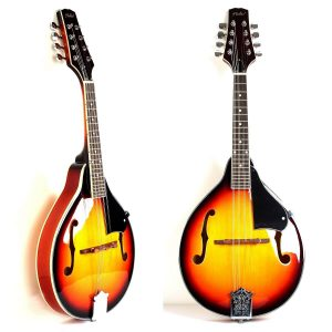 A-Style Mandolin Instrument