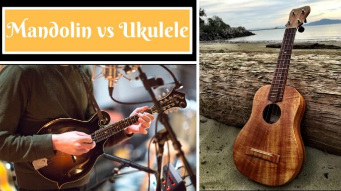 Mandolin vs Ukulele
